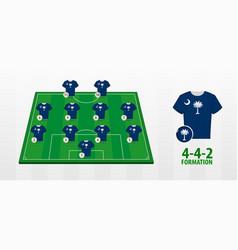 South carolina national football team formation vector