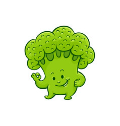 cartoon broccoli character okey gesture vector image