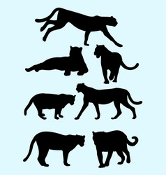 cheetahs and panthers silhouettes vector image
