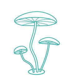 Fungi contour icon vector