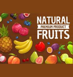 natural farm ripe fruits or berries cartoon poster vector image