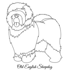 old english sheepdog outline vector image