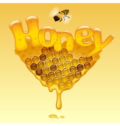 Honey sign vector image vector image