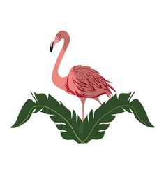 pink flamingo icon vector image