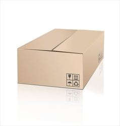 Unpacking cardboard box with fragile symbol vector image