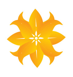 abstract beautiful yellow flower icon logo vector image