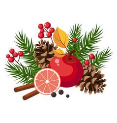 christmas design with fir grapefruit berries vector image