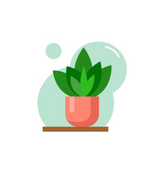 Flat house plant pot colorful vector