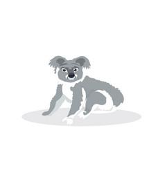 koala icon cartoon endangered wild australian vector image