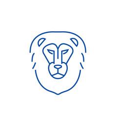 lion head line icon concept lion head flat vector image