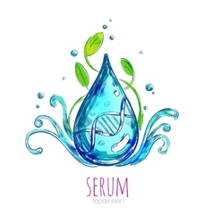 Serum Essence Droplet Composition vector