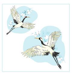 set birds crane stork heron vector image