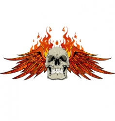 Skull wings and flames vector