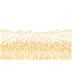 Agriculture wheat field hand drawn sketch rural vector