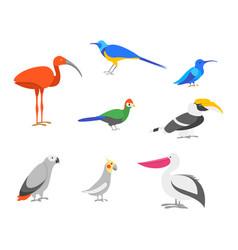 cartoon color exotic bird icon set vector image