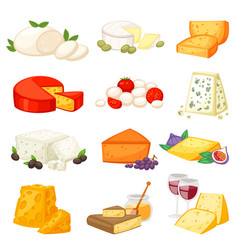 Cheese cheesy food and dairy products with vector