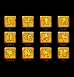 chinese zodiac signs hieroglyphs on square gold vector image