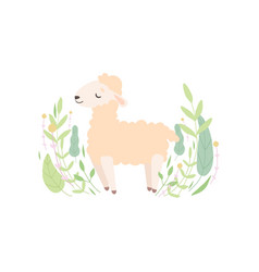 cute little lamb standing on meadow adorable vector image