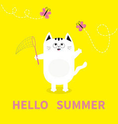 Hello summer white cat pink butterfly insect net vector