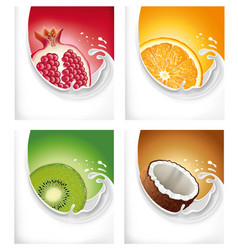 Milk splash with exotic kiwi pomegranate orange vector
