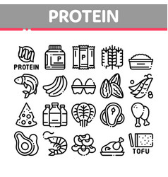 protein food nutrition collection icons set vector image