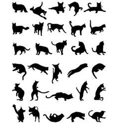 Silhouettes cats vector