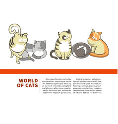 worlds of cats promotional banner for pet shop vector image