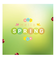 hello spring background with colorful ladybugs vector image vector image