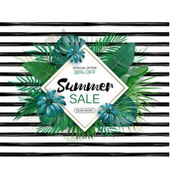 summer sale concept summer background with vector image