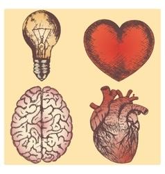 Hand drawn sketch set - brain vector image