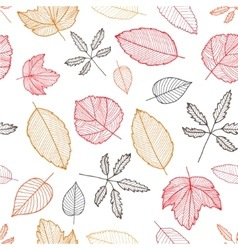 autumn colorful hand drawn leaves vector image