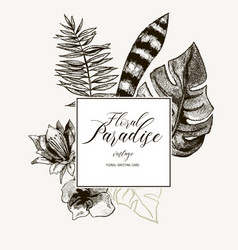 exotic natural vintage black and white vector image