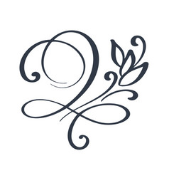 flourish swirl ornate decoration for pointed pen vector image