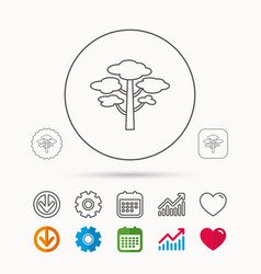 pine tree icon forest wood sign vector image