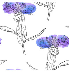 seamless pattern with drawing corn flower vector image