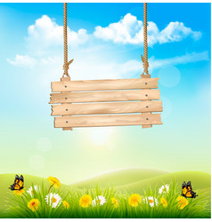 Spring nature background with green grass and vector