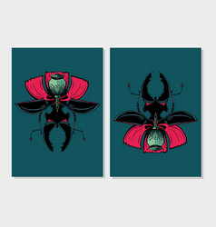 stag beetle insect with poppy flower flora vector image
