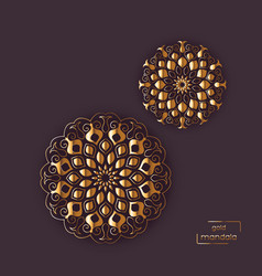 Two flower oriental mandalas vector