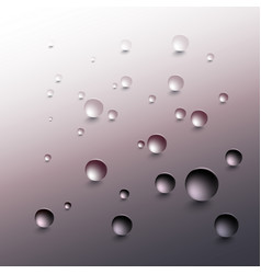 water drops on a gray background round raindrops vector image