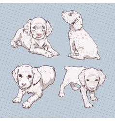 Set of little puppy hand-drawing vector image