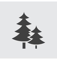 Spruce icon vector image