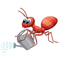 Ant with watering can vector