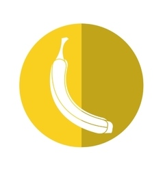 Banana appetizing fruit nature yellow circle vector