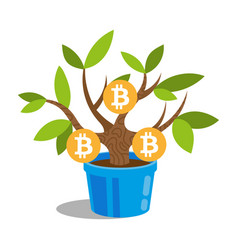 bitcoin tree vector image