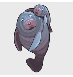 Family a marine seal father and baby vector
