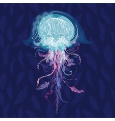 Magic Jellyfish vector image