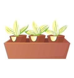 Plants in pots icon cartoon style vector