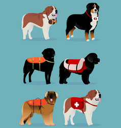 Set of dogs rescuers vector