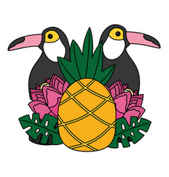 toucan birds pineapple flower tropical summer vector image