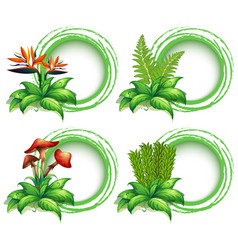 border templates with leaves and flowers vector image vector image